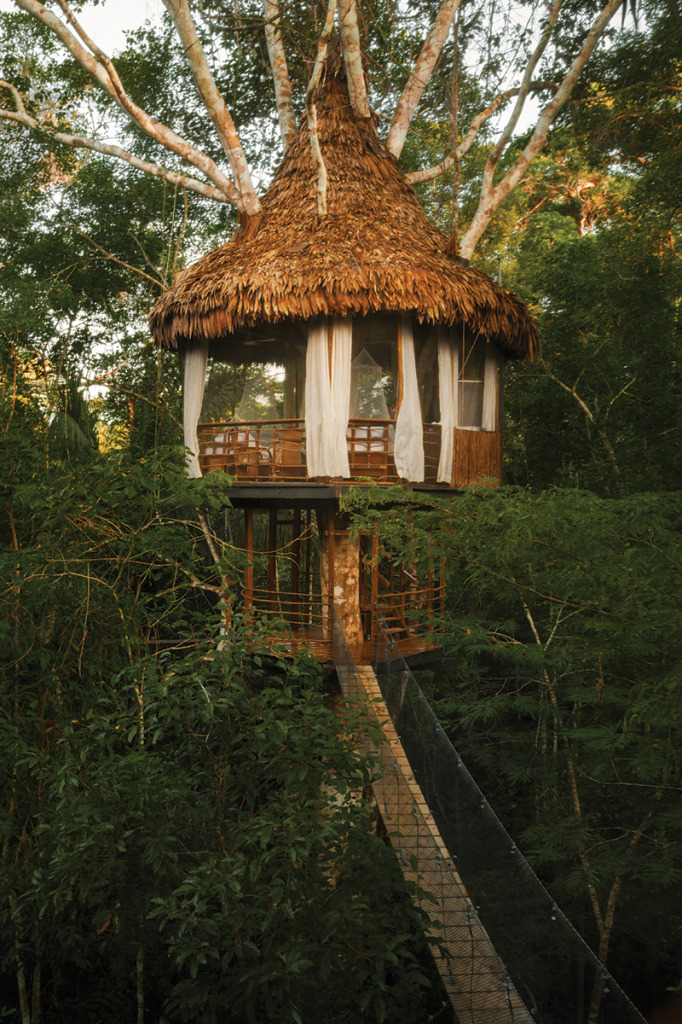 Treehouse_Bungalow_Exterior-2a