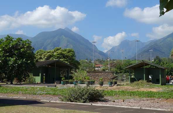 Volunteer at Maui Nui Botanical Garden