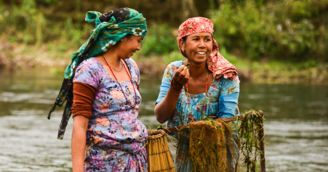 Tharu ladies fishing for small fish and shrimp to add to a fish curry dish in Gothauli Chitwan