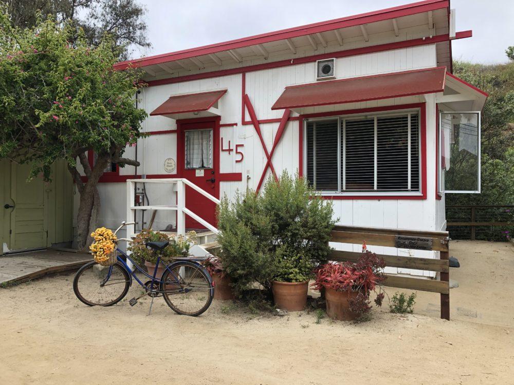 Pedego bike tour