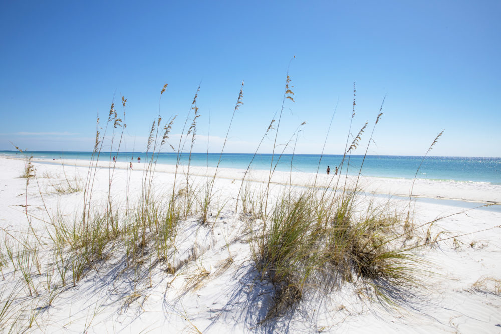 Shell Island Beach Florida Panhandle